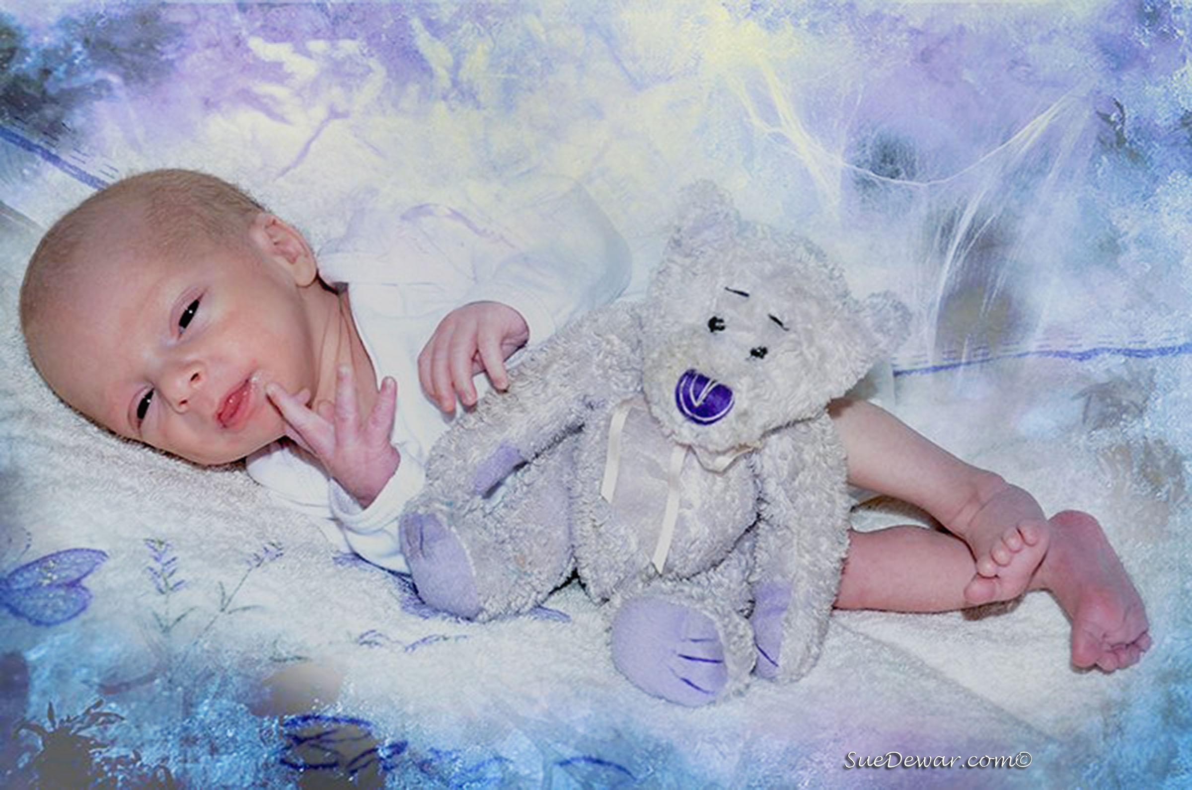 SueDewar_Family_Portraits_Babies